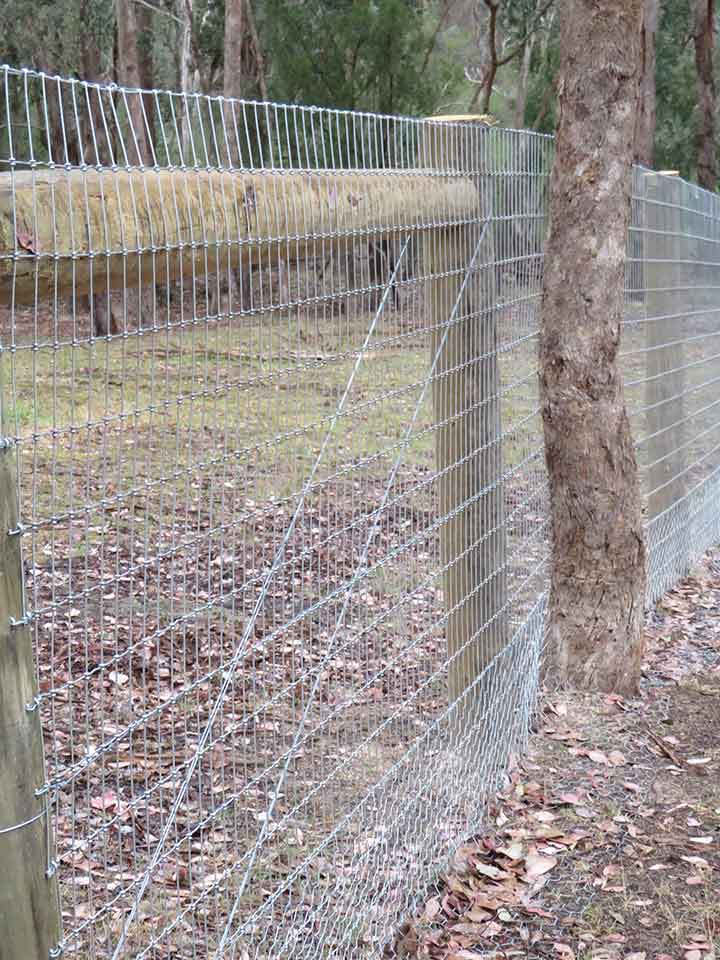 Chicken & Rabbit Fencing