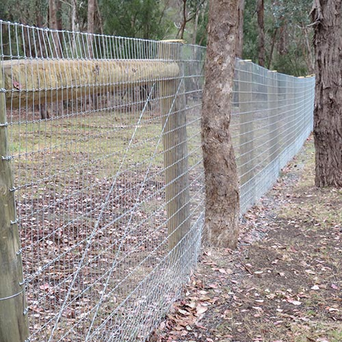 Stock-Fencing-Diamond-Creek